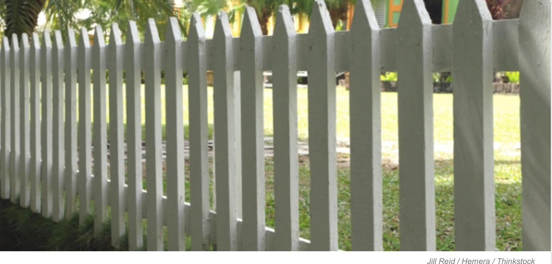 Arbres et clôtures — Connaissez-vous vos droits?